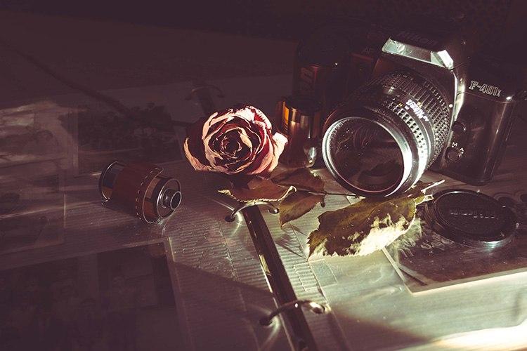 pexels-photo-31268